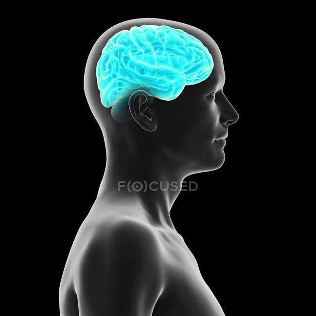 Silhouette humaine avec le cerveau illuminé bleu sur le fond noir, illustration numérique. — Photo de stock