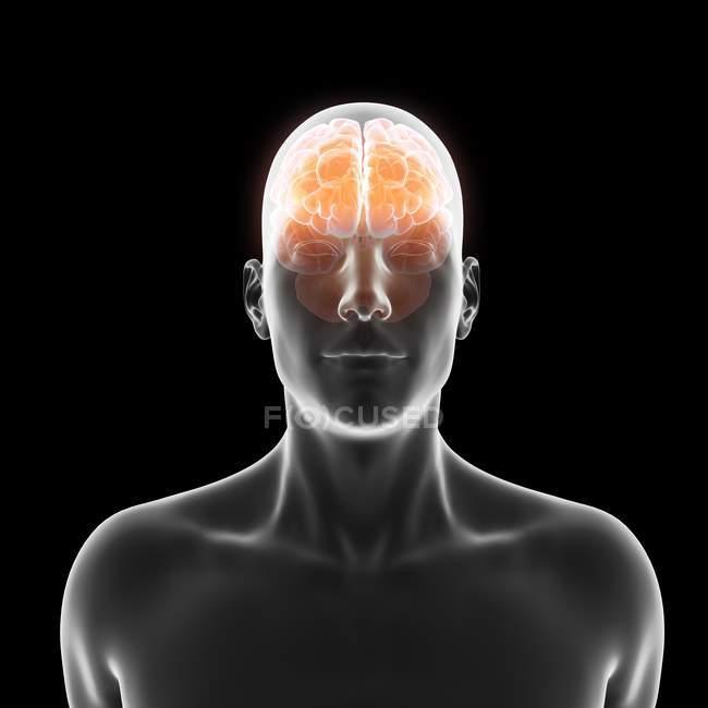 Silhouette humaine avec le cerveau illuminé rouge sur le fond noir, illustration numérique. — Photo de stock