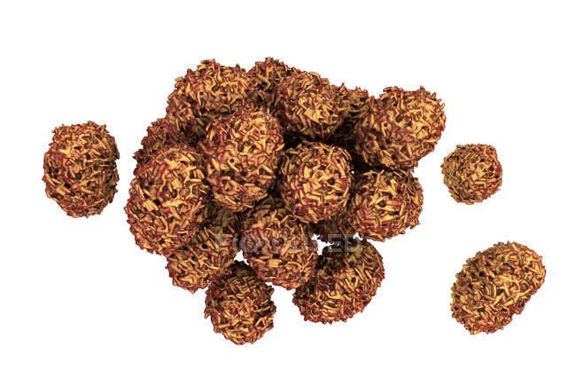 Spores toxiques de moule du champignon de chartarum de Stachybotrys, illustration numérique. — Photo de stock