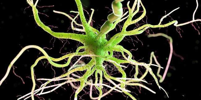 Cellule nerveuse de couleur verte sur fond sombre, illustration numérique . — Photo de stock