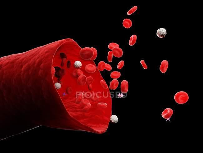 Vasos sanguíneos abstractos con glóbulos blancos y rojos, ilustración digital . — Stock Photo
