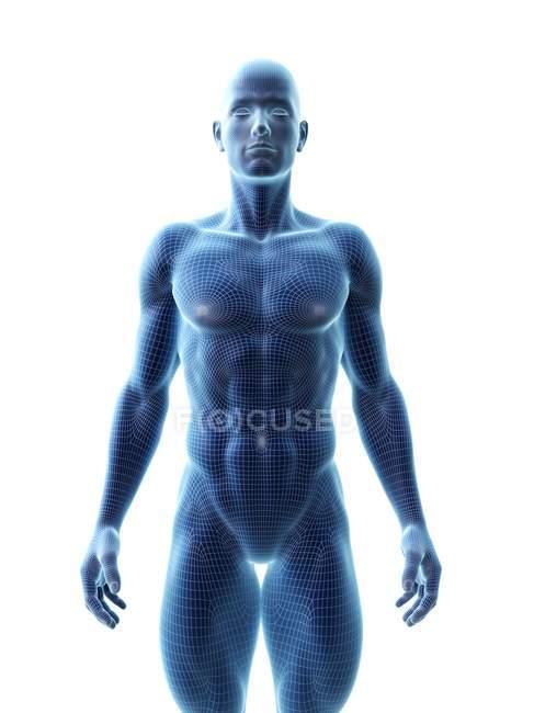 Silueta abstracta del hombre musculoso, ilustración digital . - foto de stock
