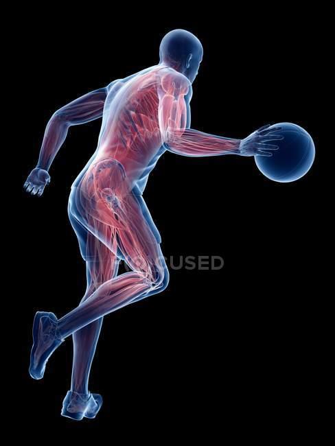 Músculos masculinos del jugador de baloncesto mientras que funciona con bola, ilustración del ordenador . - foto de stock