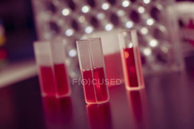 Échantillons liquides dans des cuvettes de quartz . — Photo de stock