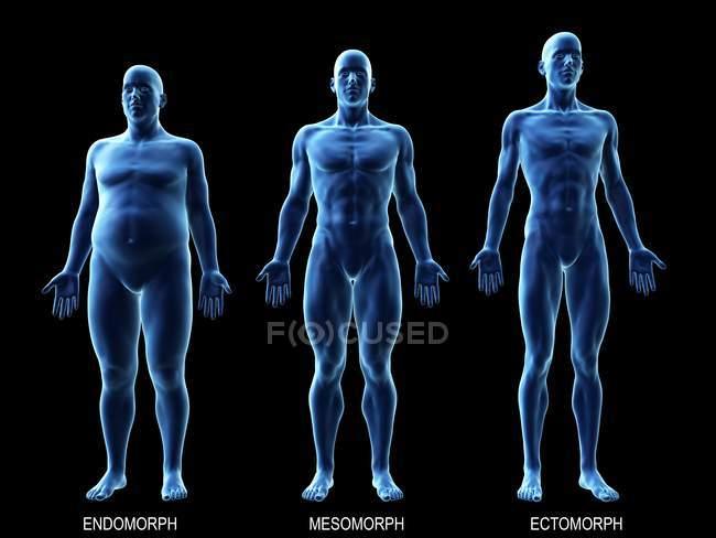 Мужчины различных типов тела на черном фоне, компьютерная иллюстрация. — стоковое фото