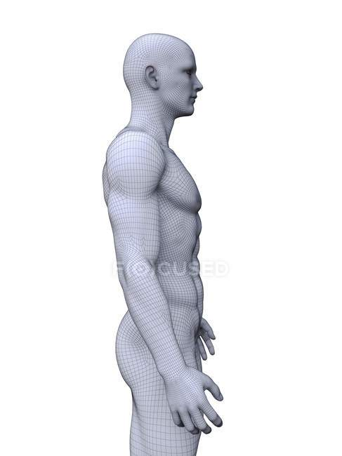 Abstract silhouette of muscular man, digital illustration. — Stock Photo