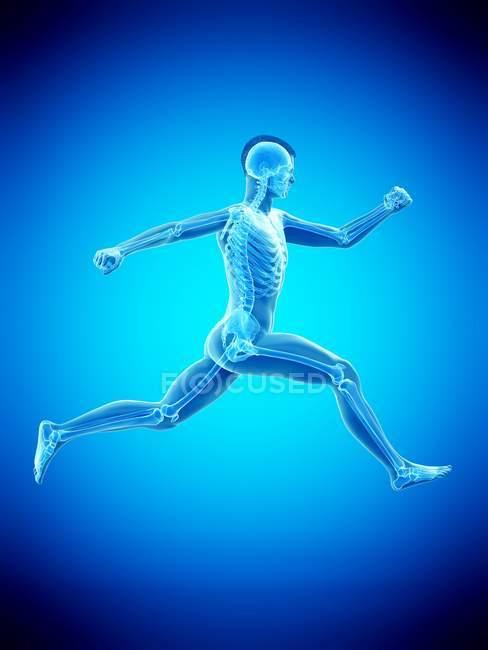 Silueta de hombre corriendo con esqueleto visible, ilustración digital . - foto de stock