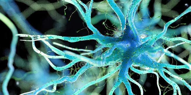 Blue colored nerve cell on dark background, digital illustration. — Foto stock