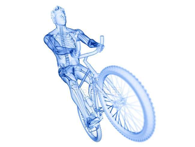 Silhouette of male cyclist, computer illustration. — Stock Photo