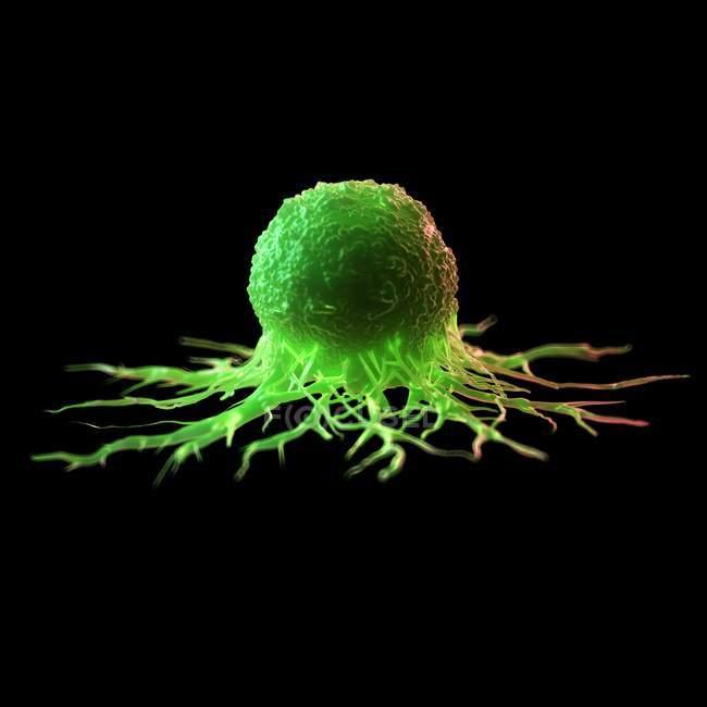 Абстрактные зеленые цветные раковые клетки на черном фоне, цифровая иллюстрация . — стоковое фото