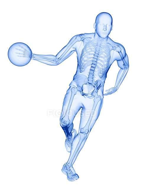 Esqueleto del jugador de baloncesto en acción, ilustración por computadora . - foto de stock