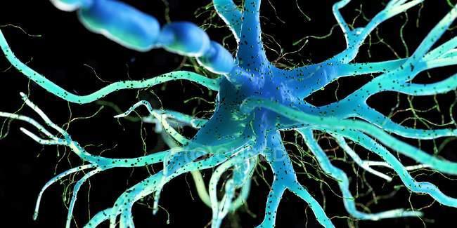 Cellule nerveuse de couleur bleue sur fond sombre, illustration numérique . — Photo de stock