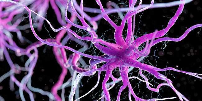 Cellule nerveuse de couleur rose sur fond sombre, illustration numérique . — Photo de stock