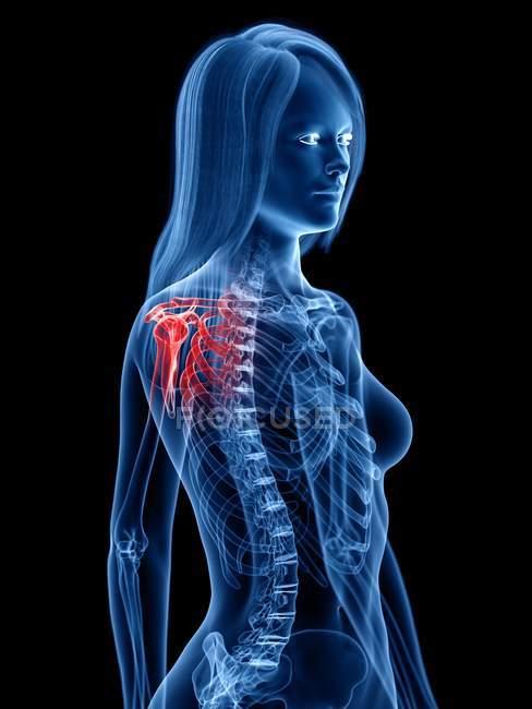 Silhouette umana astratta con dolore alla spalla, illustrazione concettuale . — Foto stock