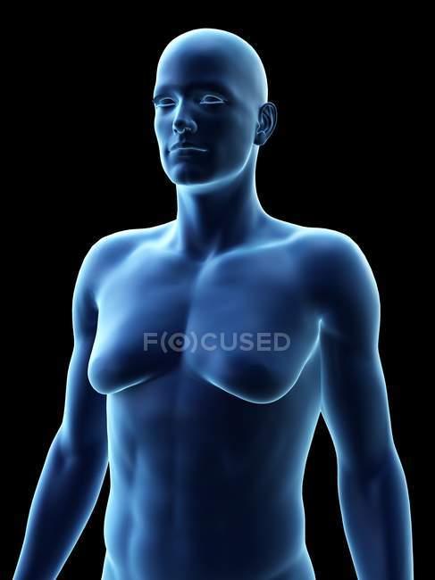 Hombre con trastorno de ginecomastia, ilustración digital . - foto de stock