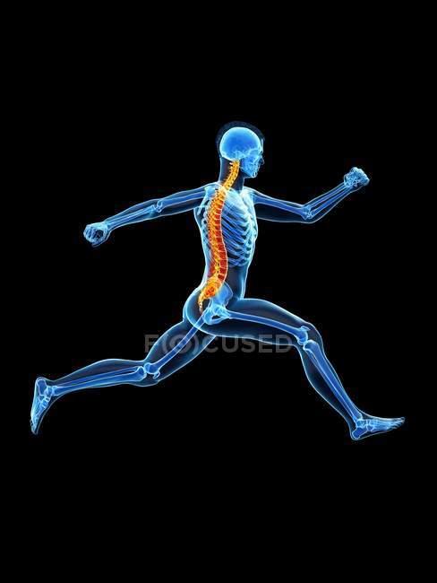 Vista lateral del cuerpo del corredor masculino con dolor de espalda en acción, ilustración conceptual . - foto de stock