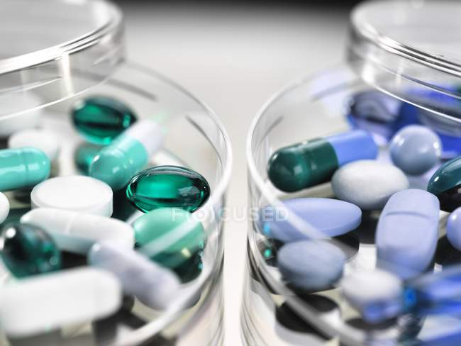 Pharmaceutical variety of medicine capsules in petri dishes. - foto de stock