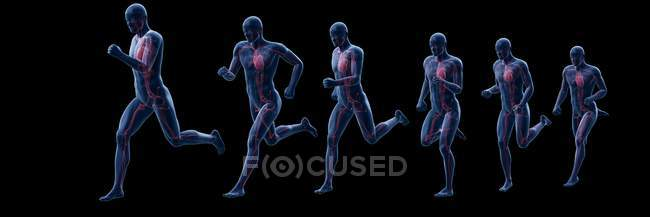 Runner silhouette with visible heart, composite digital illustration. - foto de stock