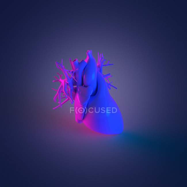 Colorful human heart model on dark background, computer illustration. — Photo de stock
