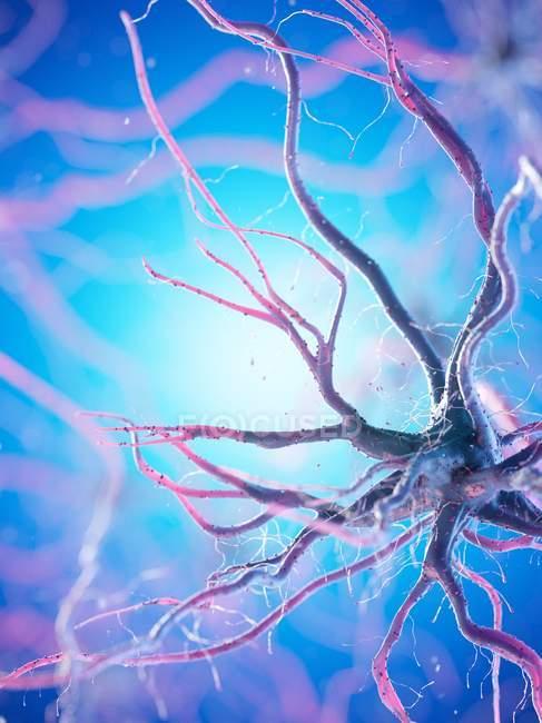Cellule nerveuse avec de nombreuses dendrites sur fond bleu, illustration numérique . — Photo de stock