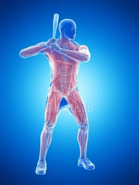 Maschio muscoli giocatore di baseball tenendo pipistrello, illustrazione del computer . — Foto stock