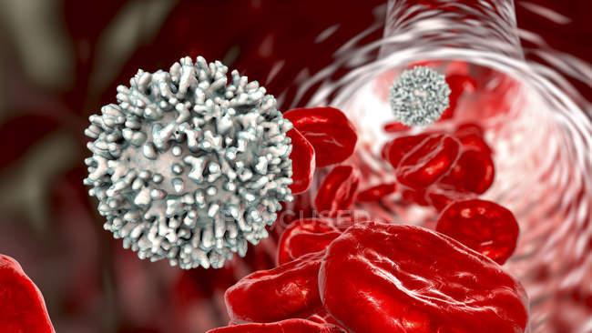 Células brancas do sangue com glóbulos vermelhos, ilustração do computador . — Fotografia de Stock