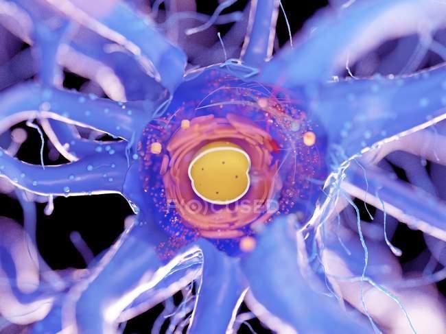 Structure cellulaire nerveuse en coupe transversale sur fond noir, illustration numérique . — Photo de stock