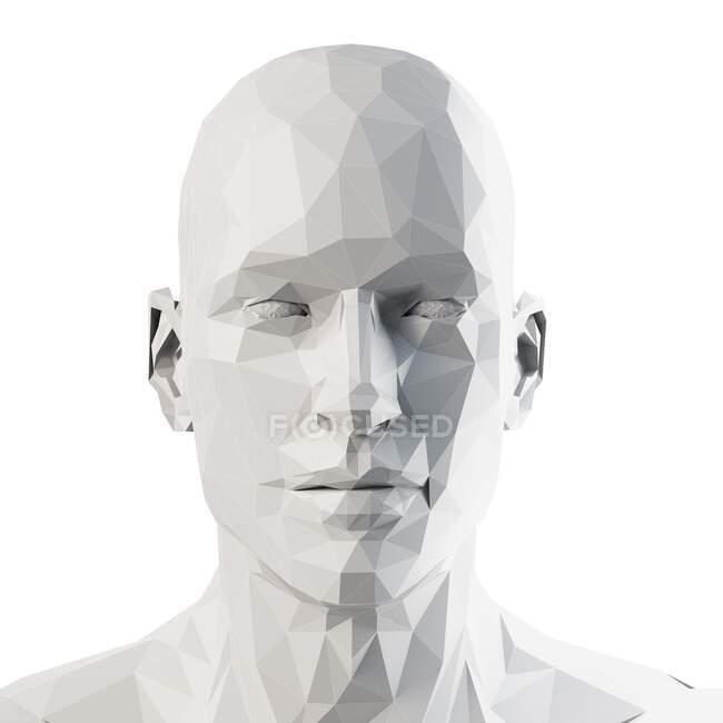 Human head, computer illustration — Stock Photo