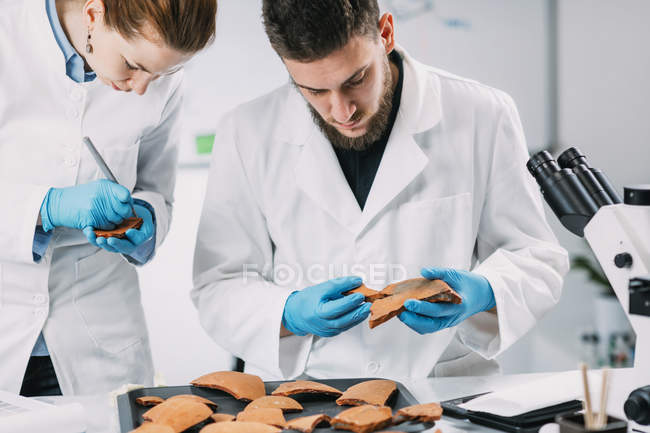 Archaeologists reconstructing broken pottery in laboratory. — Stockfoto