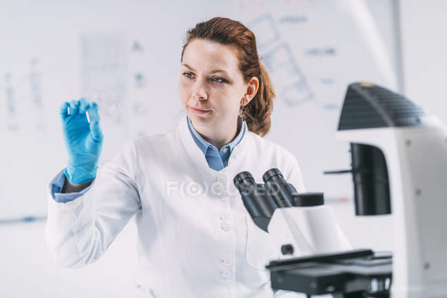 Female archaeologist looking at ancient tooth root in microscope slide in laboratory. — Stock Photo