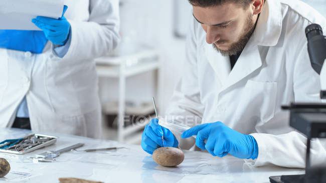 Archaeologist analyzing ancient artifact in laboratory. — стокове фото