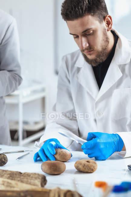 Археологи аналізують древні артефакти ваги риби.. — стокове фото