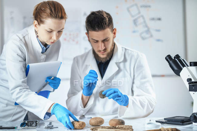 Archaeologists analyzing ancient artifacts in laboratory. — Stock Photo