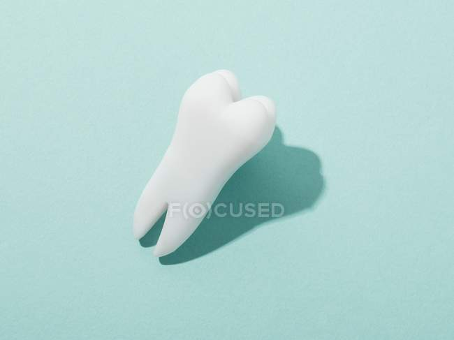 Modello di dente umano su sfondo blu — Foto stock