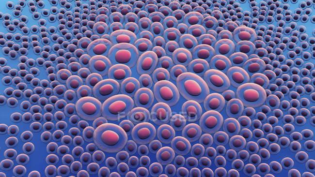 Кишкові клітини тканин, цифрова ілюстрація. — стокове фото