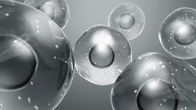 Клітини тварин з мітохондрією, цифровий приклад. — стокове фото