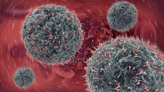 Трехмерная иллюстрация антител, атакующих вирусы в кровотоке. — стоковое фото