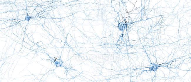 Абстрактна структура нейронної мережі на фоні світла, цифрове зображення. — стокове фото