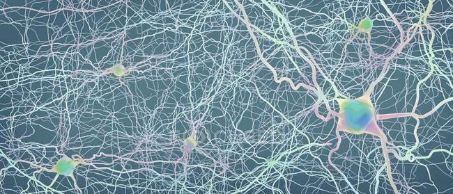 Estructura abstracta de la red neuronal sobre fondo claro, ilustración digital . - foto de stock