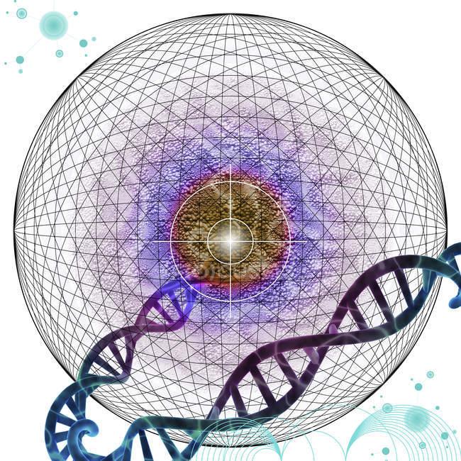 Terapia genética selectiva, ilustración conceptual abstracta. - foto de stock