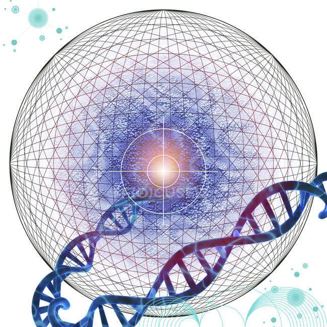 Адресная генная терапия, концептуальная иллюстрация. — стоковое фото