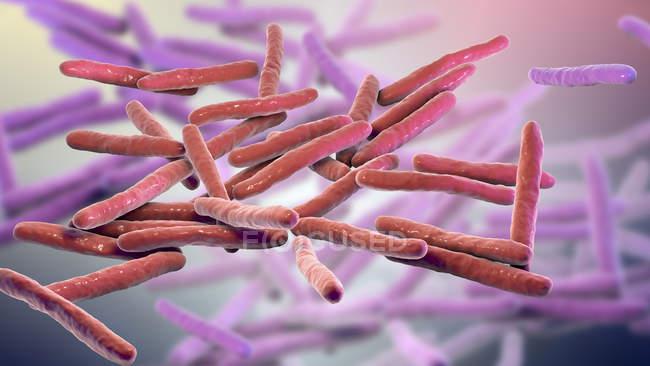 Illustrazione digitale di Mycobacterium leprae batteri gram-positivi a forma di asta, agente causale della lebbra malattia . — Foto stock