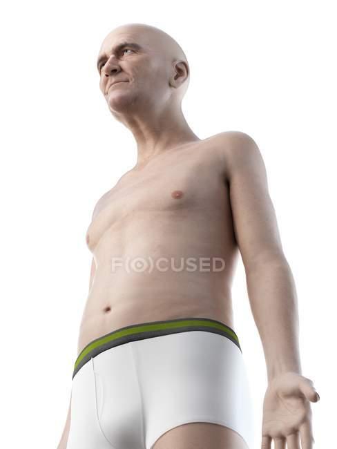 Ilustración digital del cuerpo superior del hombre mayor. - foto de stock