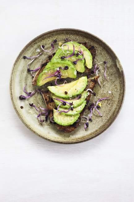 Здорова веганська закуска свіжого авокадо на тостах з проростками на круглій тарілці.. — стокове фото
