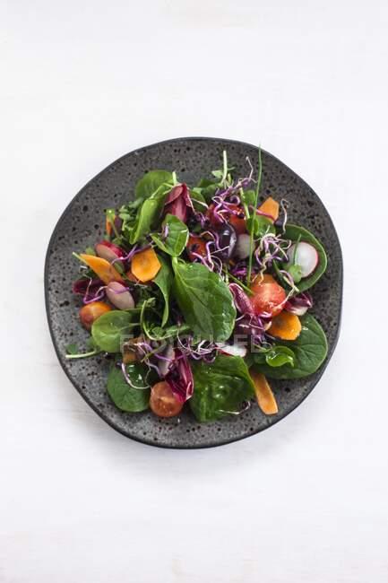 Сире овочеве салат на темній тарілці, здорове харчування.. — стокове фото