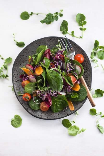 Salade de légumes crus sur assiette foncée, alimentation saine . — Photo de stock
