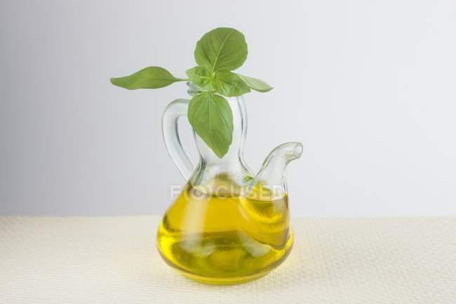 Huile d'olive dans une cruche en verre et basilic frais . — Photo de stock