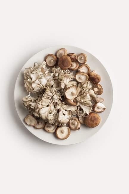 Teller mit Maitake und Shiitake-Pilzen auf weißem Hintergrund. — Stockfoto