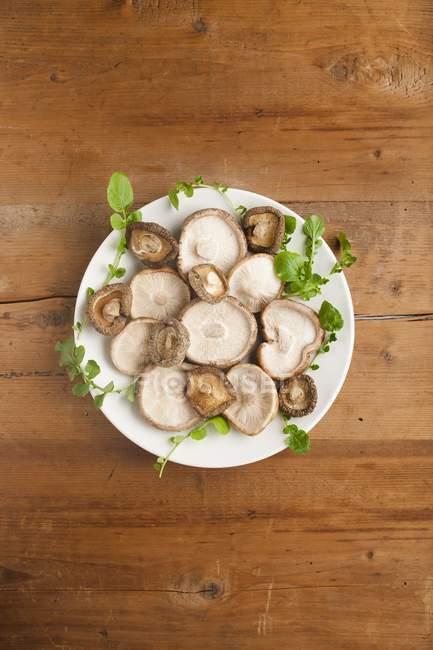 Blick von oben auf Teller mit Shiitake-Pilzen und Kräutern. — Stockfoto