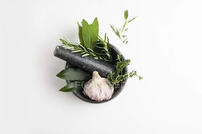 Argamassa e pestle com alho e ervas no fundo branco. — Fotografia de Stock